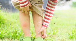Dengue: alerta para cuidados com as crianças