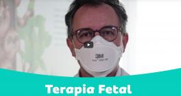 Programa de Terapia Fetal no Centro de Excelência em Alta Complexidade
